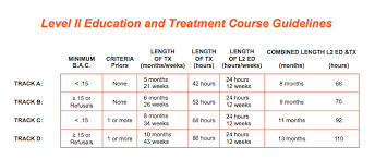 Level Ii Alcohol Education And Therapy Colorado Sample Therapy