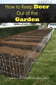 how to keep deer away from garden. how to keep deer out of the garden away from r