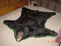 bearrugs bear skin rugs with rug cleaner