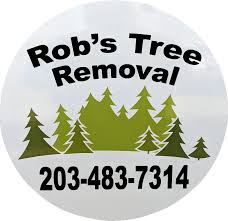 toggle navigation robs tree service13