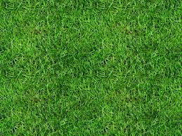 Dirt grass texture seamless Ground Seamless Grass Texture Free Mb3dcouk Seamless Grass Texture Free naturegrassandfoliage Textures