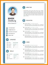 cv format word doc template cv template doc word