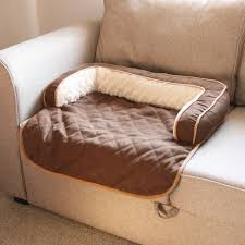 furniture dog couch best of goals wit delight beautiful me my pet brown soft cosy roll