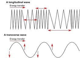 transverse and longitudinal waves venn diagram brinson martha waves sound seismic