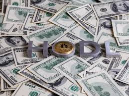 I enjoy hodl as a meme, but i wouldn't i don't think that the hodl meme had any real impact on the bitcoin, because serious people and serious money are not motivated from a single meme. Hodl Meme Now Dates Back To Very First Bitcoin Transaction