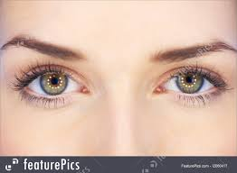 human body parts eyes of 20 25 years old beautiful woman part of