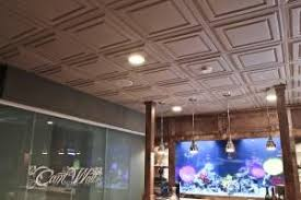 tray ceiling rope lighting alluring saltwater. Delighful Ceiling Basement With Salt Water Aquarium For Tray Ceiling Rope Lighting Alluring Saltwater L