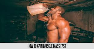 how to gain muscle m fast world