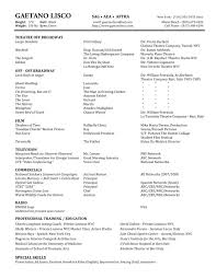 Hard Copy Of Resume Hard Copy Of Resumes Cityesporaco 4
