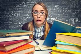 Заказать курсовую по административному праву Блог  Заказать курсовую по административному праву