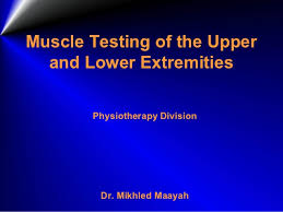 Manual Muscle Testing Upper Extremity Chart Manual Musle Testing