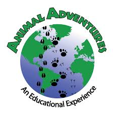 Image result for animal adventure camp