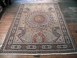 charming 10x13 indoor outdoor rug