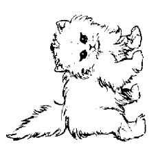 Small Picture Pics Of Baby Cat Coloring Pages Cute Baby Kittens Coloring Cute