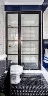 Window Pane Shower Door Black Glass Paneled Shower Door Evars ...