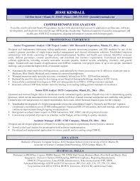 Resume Sharepoint Developer Resume