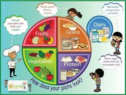healthy food plate for kids.  Kids Nutrition What Is It And Why Important  On Healthy Food Plate For Kids A
