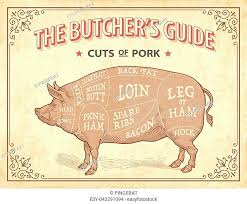 Butcher Cuts Scheme Of Pork Stock Photos And Images Age