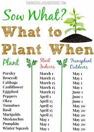 When To Sow Seeds Indoors Chart What To Plant When Chart Vegetable Garden Indoor Garden