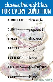 Herbal Tea Chart How To Choose The Right Tea For Every Condition Veryhom