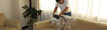 sofa dry cleaning best sofa cleaning