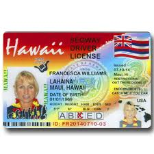 Hawaii Segway License Red From Driver's Souvenir – Lahaina Maui