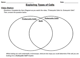 Prokaryotes Vs Eukaryotes Venn Diagram Worksheet Venn Diagram Prokaryotic And Eukaryotic Rome Fontanacountryinn Com