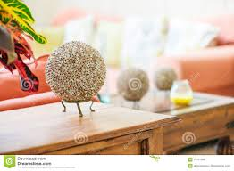 Living Room Craft Modern Home Interior Living Room Detail Seashell Balls On Table