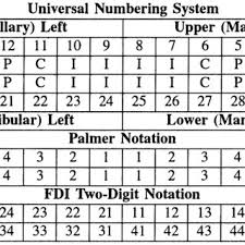 Different Used Teeth Numbering Systems Download