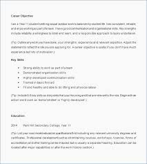 How To Write A Resume Skills And Experience Section Skills And