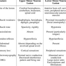 diffeiating features of upper and lower motor neuron lesions