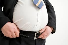 「肥満 スーツ」の画像検索結果