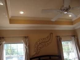Tray Ceiling Tray Ceiling Crown Molding Lighting Home Design Ideas