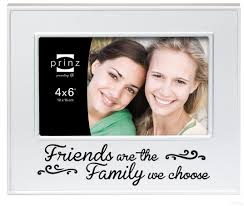 FRIENDS ARE THE FAMILY WE CHOOSE Brushed Silver 6x4 frame by Prinz