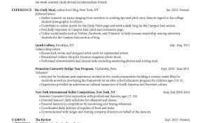 Star Method Resume Star Method Resume Examples Stunning Writing Services Nyc Modaoxus 18