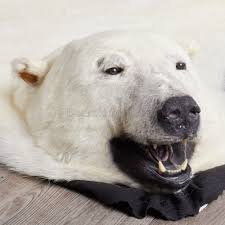 Faux Bearskin Rug Polar Bear Rugs Roselawnlutheran