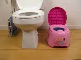 disney princess 3 in 1 potty chair