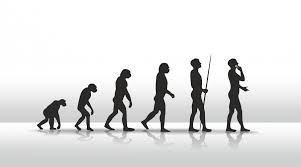 evolution of modern humans stories org shutterstock