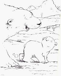 De Kleine Ijsbeer Sommige Prent Ijsbeer Gratiskleurplaatme