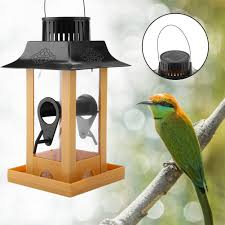 Solar Light Bird Feeder Us 7 98 46 Off New Solar Parrot Feeder Led Light Bird Feeder Station Hanging Pigeon Crow Parrot Outdoor Balcony Bird Feeding In Bird Feeding From