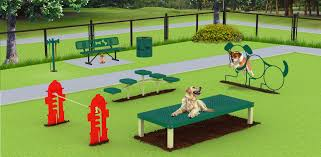 dog playground equipment essential for canine friendly park