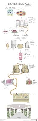 How Is Red Wine Made Wine Folly