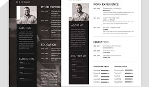 Resume Cv Templates Beautiful Resume Creator Free Download