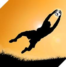 Image result for goalkeeper image