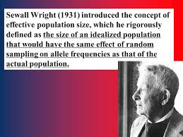 effective population size definition 1 random genetic drift 2 conditions for maintaining hardy weinberg