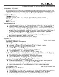 Valid Professional Summary Resume Examples For Software Developer