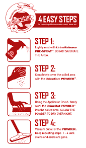 remove urine stains odors leather