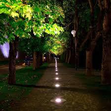 Outside Landscaping Lights Landscape Lights Low Voltage Led Pathway Lights 1w 12v 24v