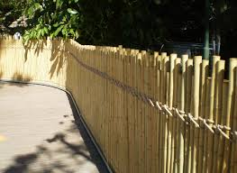 fence:Bamboo Privacy Fence Cool Bamboo Fence Roll 2 Awesome Bamboo Privacy  Fence Image Of