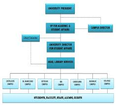 Organizational Structure Of The Rmtu Library System